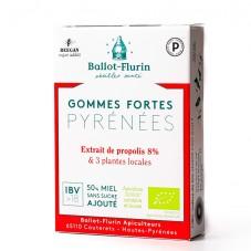 Gommes fortes Pyrénées bio 30g