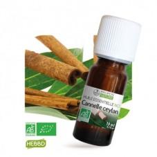 Cannelle de Ceylan bio 10ml