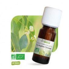 Eucalyptus citronné bio 10ml