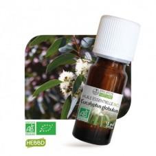Eucalyptus Globulus bio 10ml